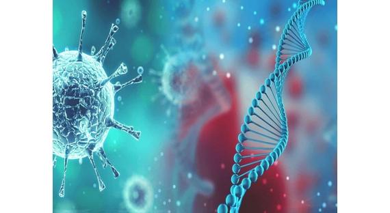 O que é coronavírus: sintomas, prevenção, transmissão e tratamento